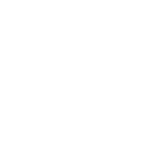 Violin Cocoon Vienna – Hand-sewed covers for stringed instruments and bows